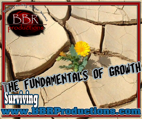 282 The fundamentals of growth 03