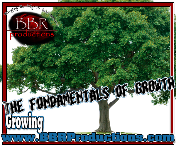 283 The fundamentals of growth 04