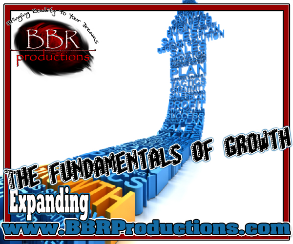294 The fundamentals of growth 05